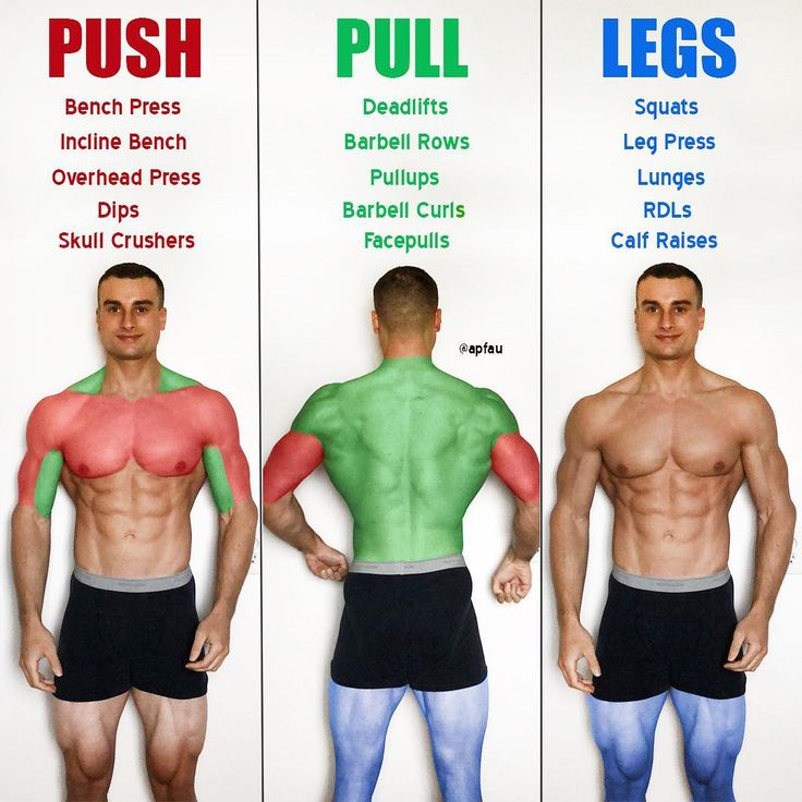 What push, pull, and legs actually means. Push muscles include your chest, trice…