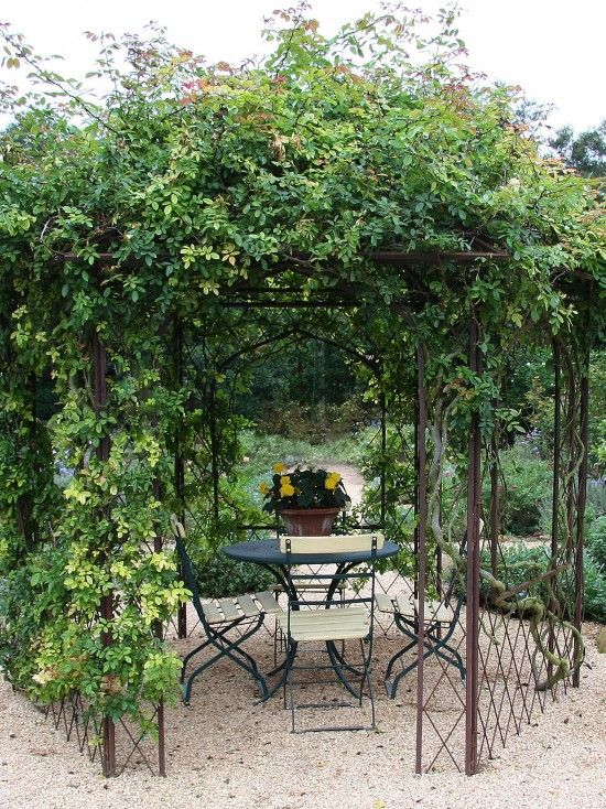 Pea Gravel Landscape Design, less expensive than a grape arbor.  Find the  structure at a bargain outlet and add a  fast growing vine.