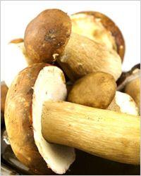 Как приготовить белые грибы (10 рецептов)