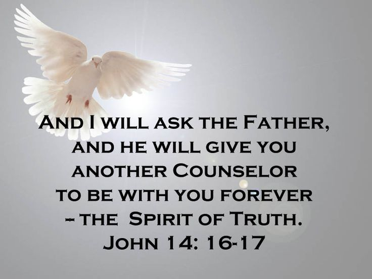 Holy Spirit.  And I will ask the Father, and He will give you another counselor to be with you forever - the Spirit of Truth.  John 14: 16-17
