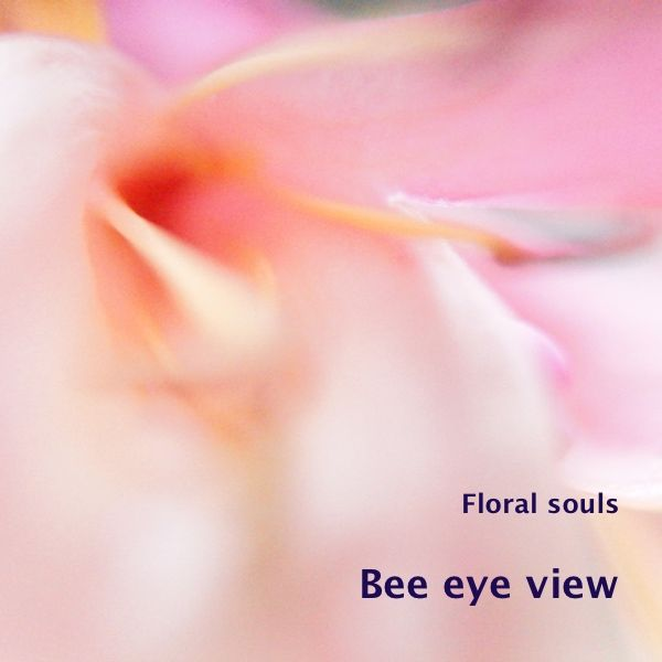 When a bee crawls into a flower, what does it see? I added a new photo to the gallery 'Floral souls'. The hart of a honeysuckle flower, as a bee might see it when it crawls into it. I m…