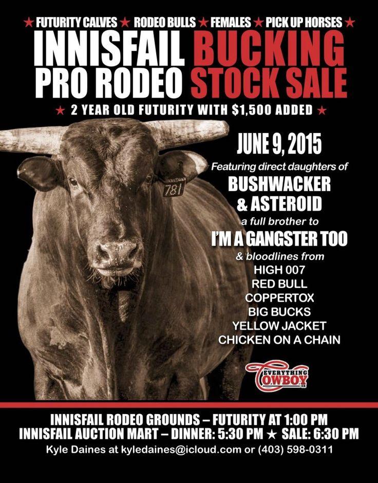 Innisfail Pro Rodeo Bucking Stock Sale June 9, 2015