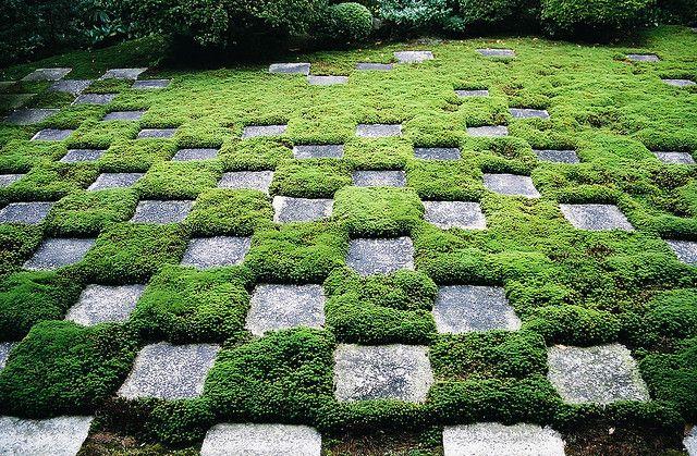 88 Best Moss Gardens Images On Pinterest Moss Garden
