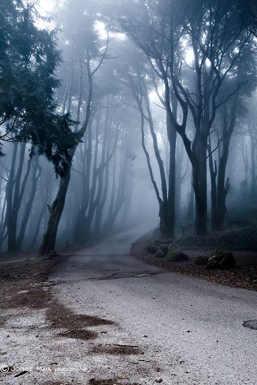 The last road Jorge Maia  https://500px.com/jorge_maia