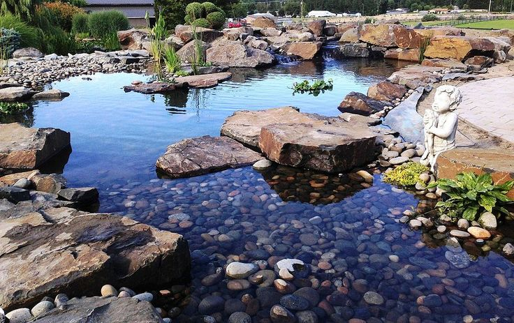 Pond 'Makeover on 15 Year Old Pond Installation