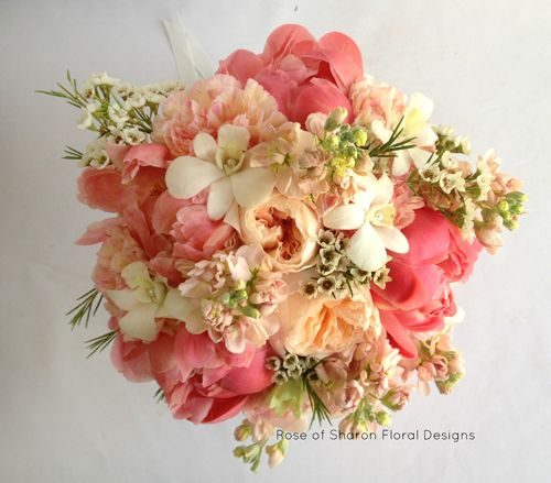 Love this!!! soft flowers in perfect colours - wax flower not in season so use other filler