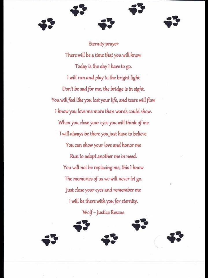 prayer for someone who lost a pet