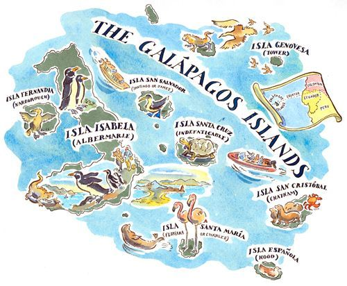 Best Galapagos Images On Pinterest Galapagos Islands - Map where is the galapagos islands relative to the us