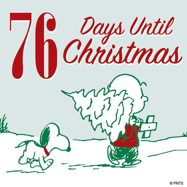 106 best .... days until Christmas! images on Pinterest | Days ...