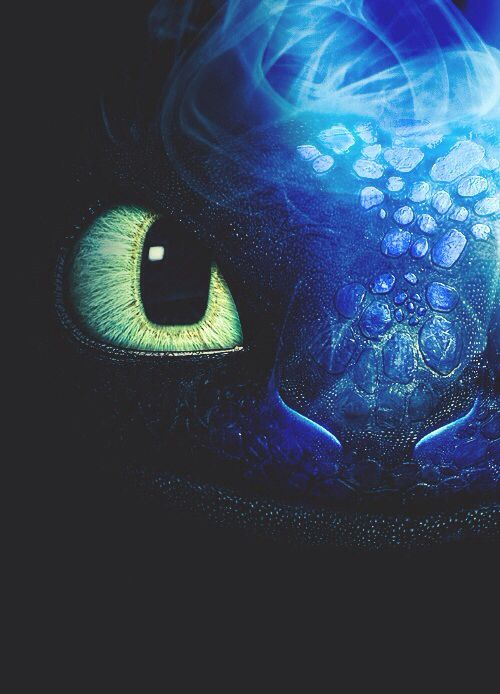 Dragon trainer Sdentato_furia buia