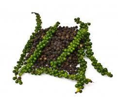 Image result for hạt tiêu sọ