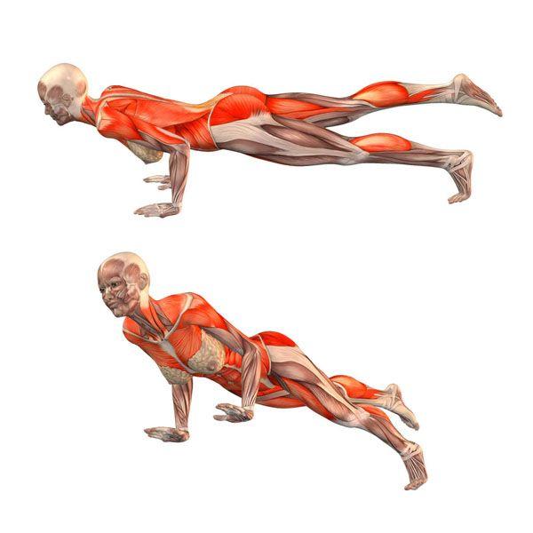 Staff pose with right leg up - Trianga Dandasana right - Yoga Poses   YOGA.com