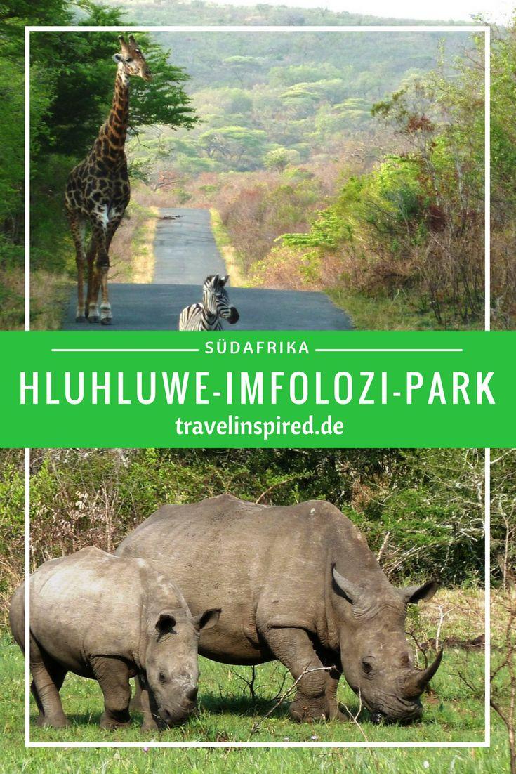 Reisbericht von unserem Besuch bei den Nashörnern im Hluhluwe-iMfolozi Nationalpark in Südafrika; rhinos in south afrika