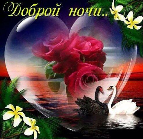 Фото открытки доброй ночи доброго утра