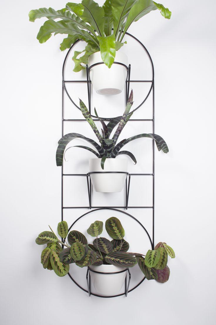 Szukasz sposobu na zakomponowanie domowej zieleni? Spraw sobie kwietnik, zaproś roślinę i stwórz bujną domową dżunglę pełną radości!