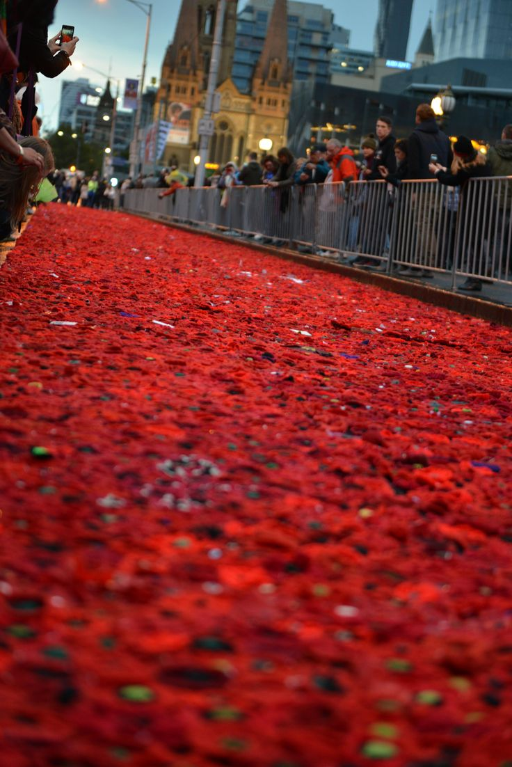 5000 poppies display, ANZAC day 2015