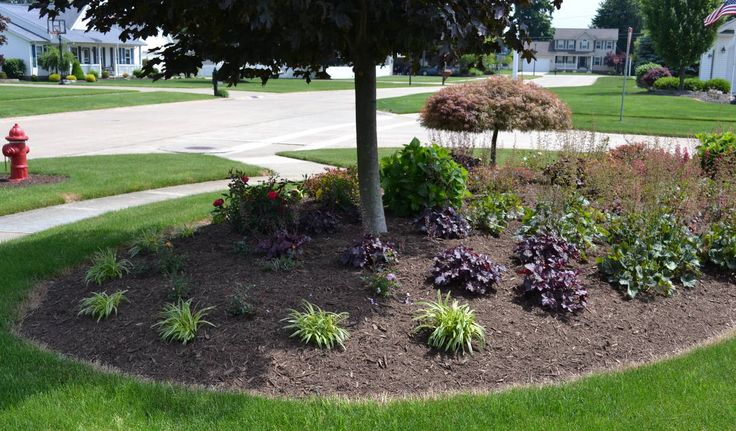 25 best ideas about corner landscaping on pinterest for Large lot landscaping ideas