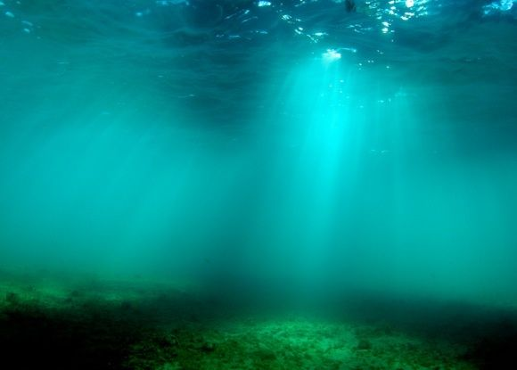 Study: Widespread loss of ocean oxygen by 2030s 5/2/16 as our warming climate saps the ocean of oxygen, marine life like fish, crabs, squid, and sea stars could be left struggling to breathe. EarthSky