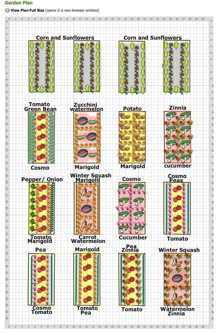 Vegetable Garden Plans Zone 9 – Garden Post | Flower garden ... on