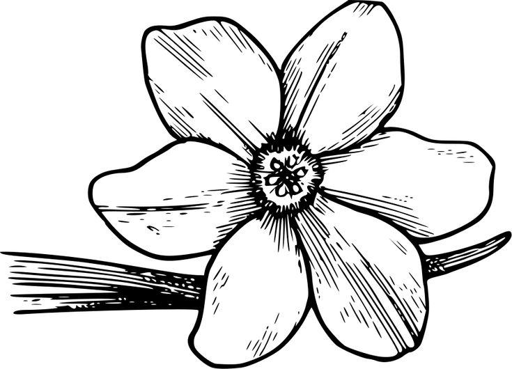 Corolla Flower Clipart, vector clip art online, royalty free ...