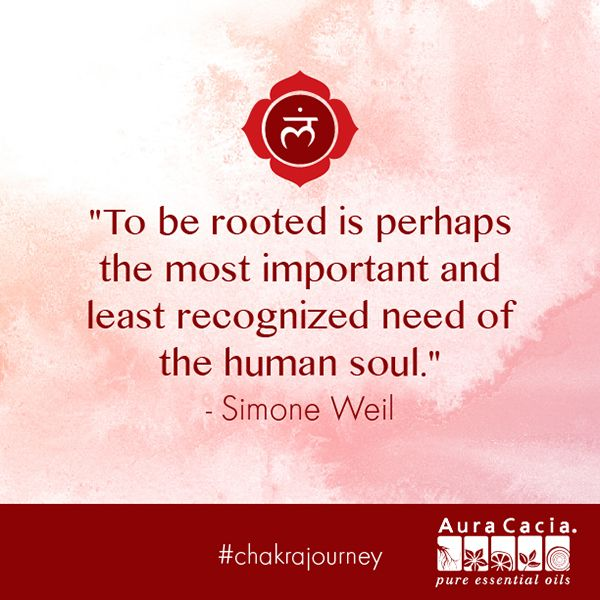 Remember how important it is to be rooted. #chakrajourney