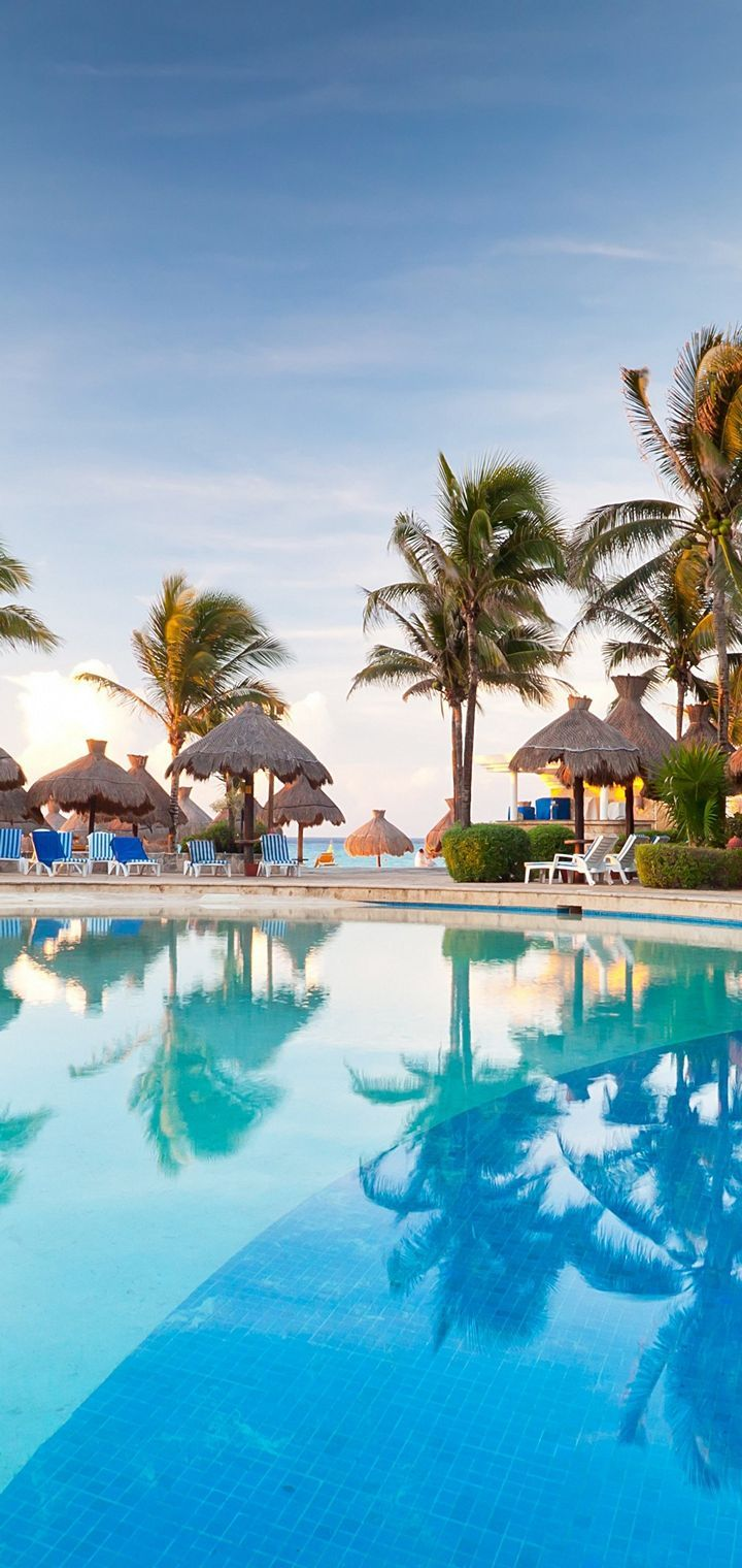 Palm Trees Resort Nature Tropical Pool Wallpaper 720x1520 Download And Share Beautiful Image In Best Availa Tropical Pool Holiday Wallpaper Tropical Resort Download wallpaper swimming pool on
