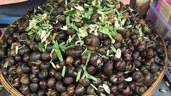 Asian Street Food, Fast Food Videos, Cambodian Street Food #02 - Snails