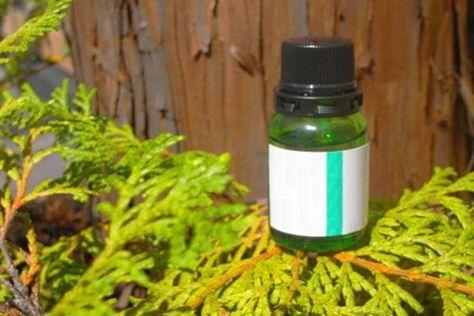 I benefici dell'olio essenziale di cipresso contro emorroidi, cellulite. Le sue proprietà si applicano anche a viso, pelle, capelli, circolazione e le controindicazioni in gravidanza oltre ad i modi d'uso esterni e interni