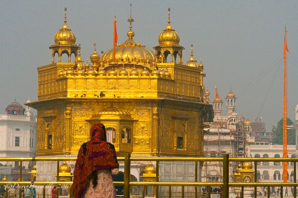 Woman prays at Golden Temple