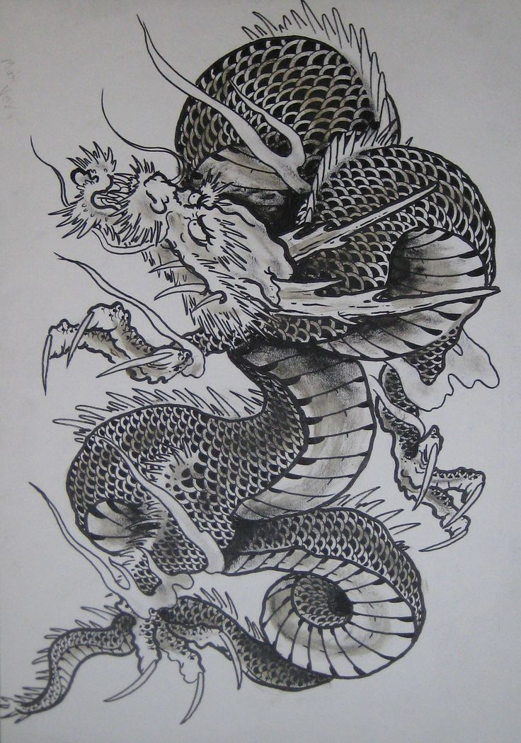 Japanese Dragon: Japanese Dragon 2 By Clarknorth
