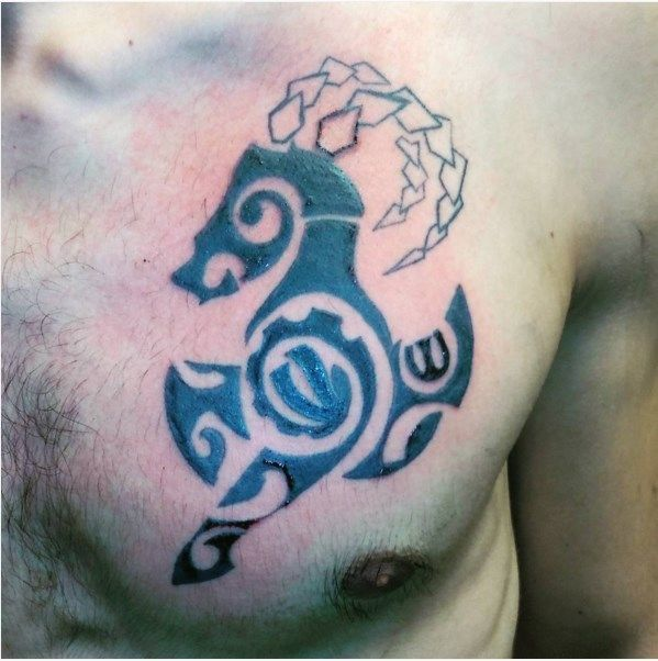 30 different Capricorn tattoos Which one would you choose