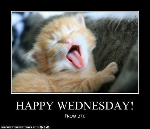 7 best images about Happy Wednesday Fur Babies! on ...