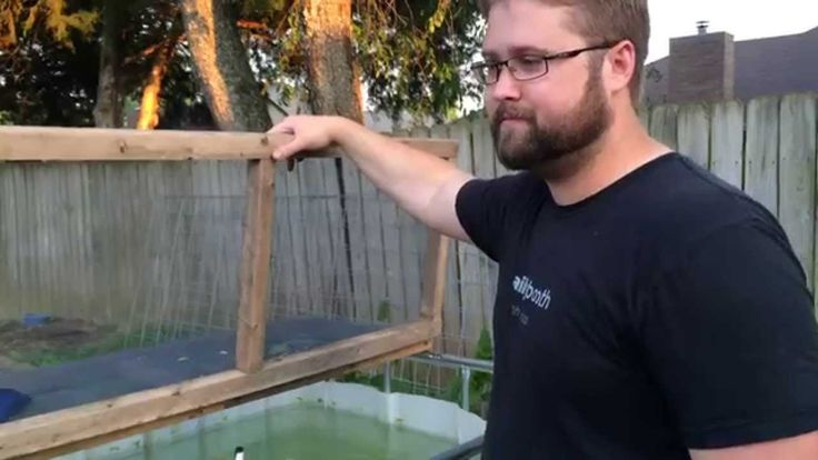 Channel Catfish added to the Aquaponics