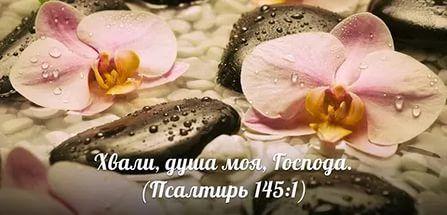 псалом слава богу за все: 15 тыс изображений найдено в Яндекс.Картинках