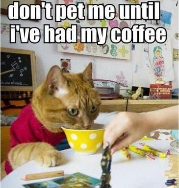 coffee humor | ☕Slight addiction...