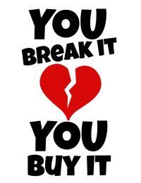 You break it , you buy it