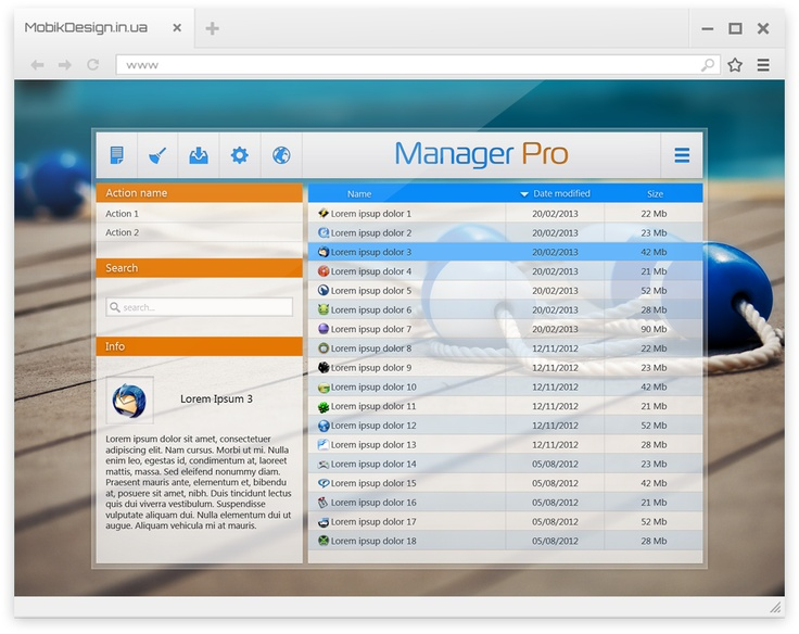 Install / uninstall manager interface