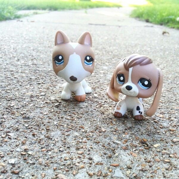 #LPS Bull Terrier and Beagle