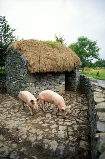 Limerick, Ireland.  I could live in this hut... Or I could just have one in my backyard... Either way.