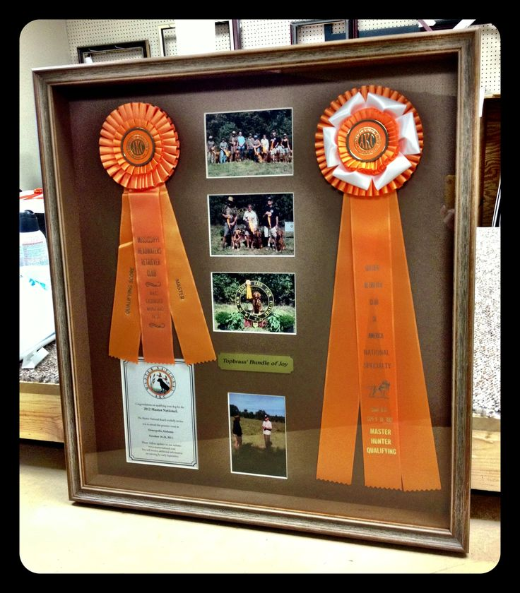 Lovely AKC Ribbons And Photographs With Conservation Clear Glass And Cotton Rag Matting Framed