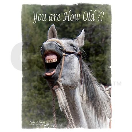 Birthday Horse Laugh Greeting Card On Cafepress Sayings I Love