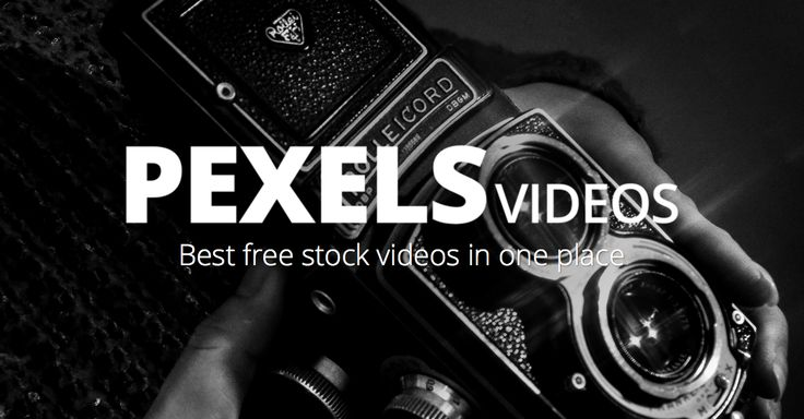 Free high quality videos · Pexels Videos Completely free stock videos. Learn More