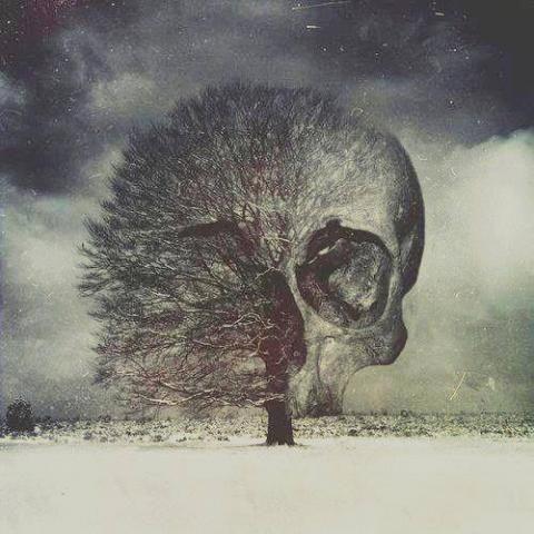 Skull Tree | Lyemium