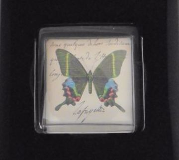 Butterfly Fermacarta England Paperweight.