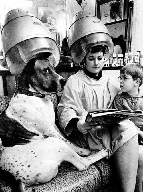 A woman, her son, and dog at the hair salon
