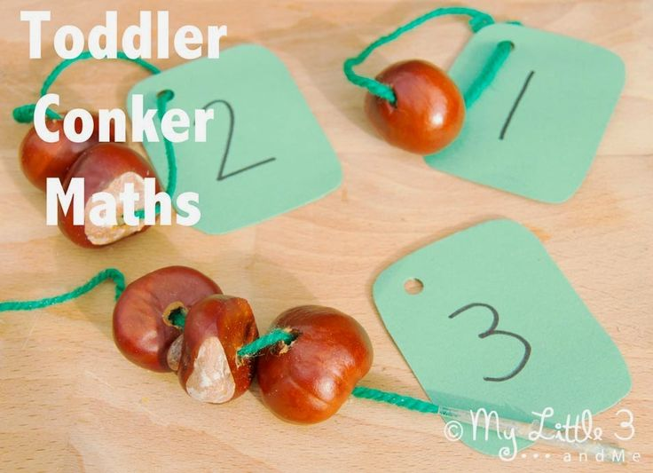 Toddler conker maths
