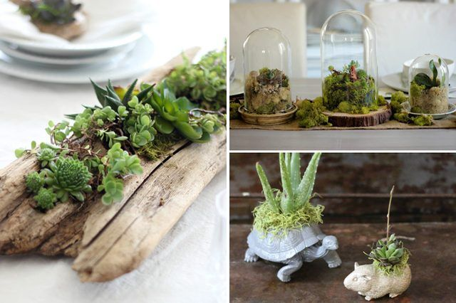 10 DIY Indoor Gardens for the Urban Gardener  Bring the outdoors in to your home with these ideas for how to make small-scale plant holders, grow self-sustaining indoor gardens and more.
