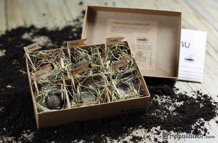 Regalador.com - Bombas de semillas para cultivar plantas aromáticas