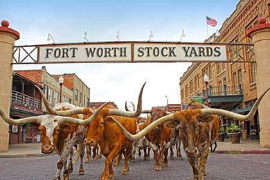 explore texas family vacations