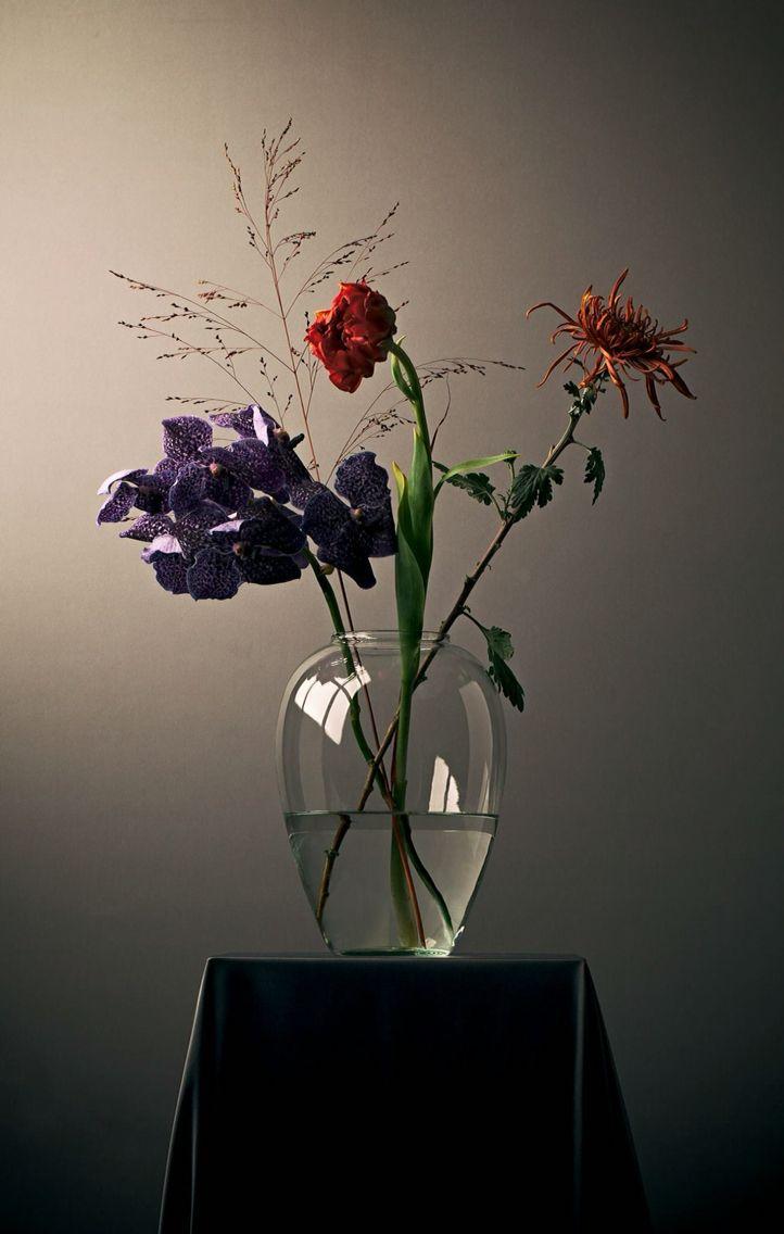 Wallflowers#3 Photo by Mart Boudestein